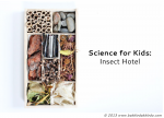 Science for Kids: Insect Hotel