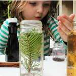 Thumbnail image for Easy Science for Kids: Winter Scent Lab