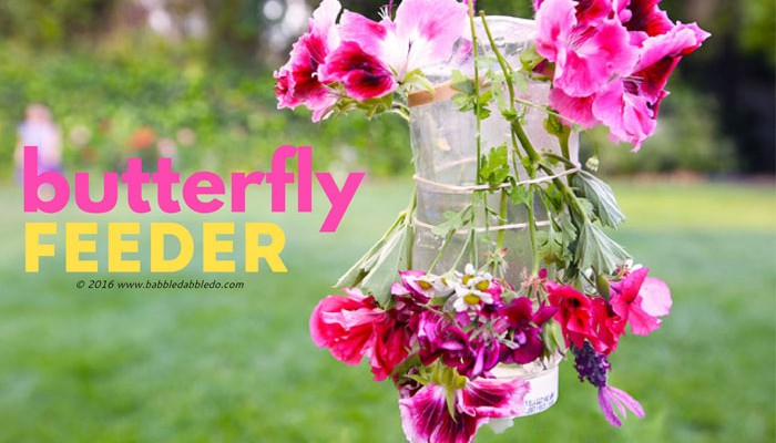 Nature Craft for Kids: Make a Butterfly Feeder