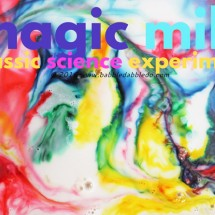 Science for Kids: Magic Milk Painting