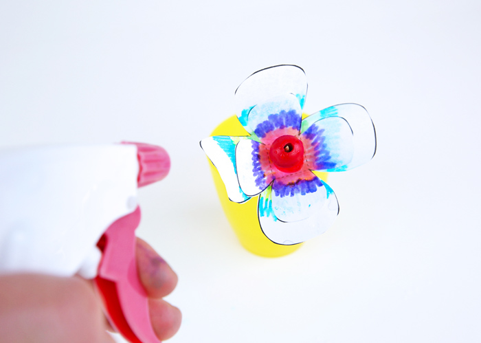 Learn about capillary action and the properties of materials in this colorful STEAM project!