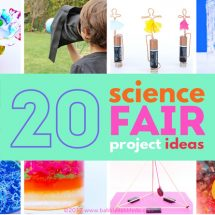20+ Science Fair Projects