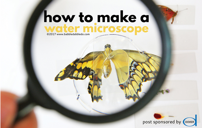 How to Make a Microscope with Water